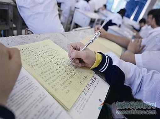 写人的作文,用人的神态,动作,话语,来反映人的特点的作文